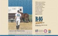 B95 – horse show